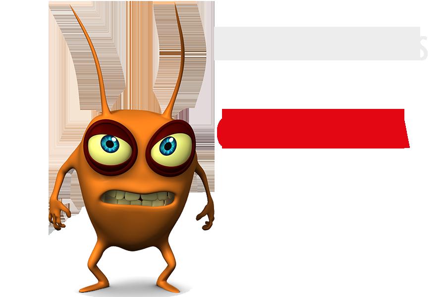 Dedetização como acabar com as baratas germânicas (Alemã)