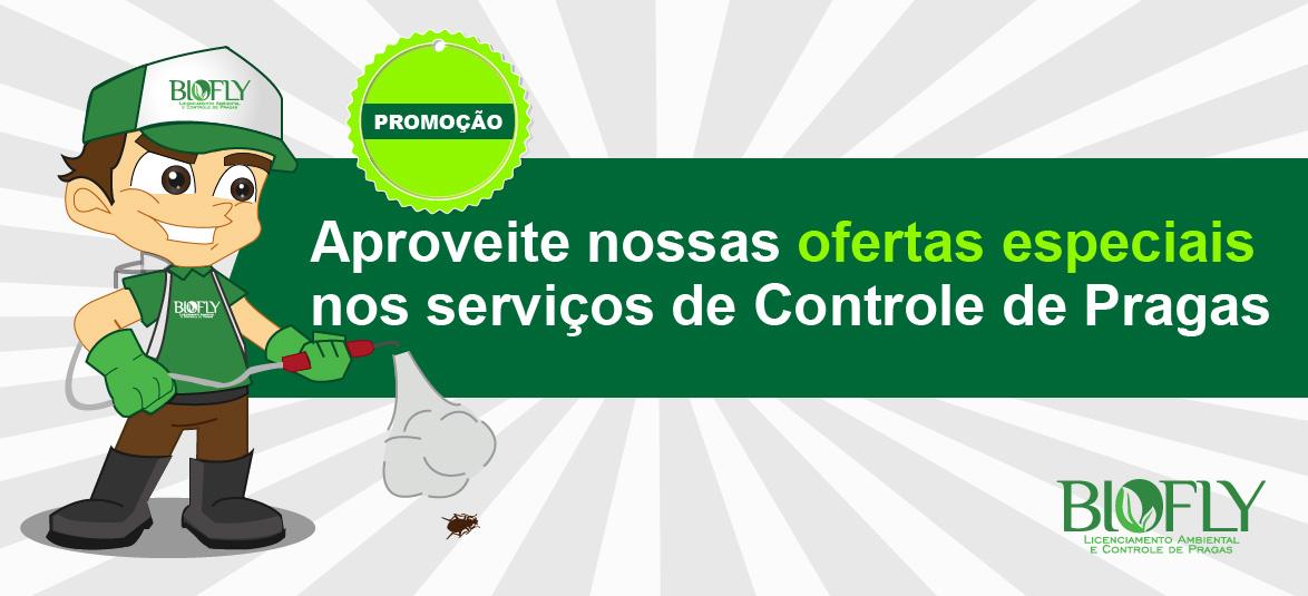 Ofertas de dedetização em Florianópolis