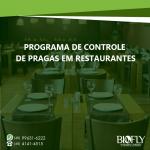 Como realizar o controle de pragas em restaurantes