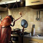 O perigo das baratas germânicas (Alemã)